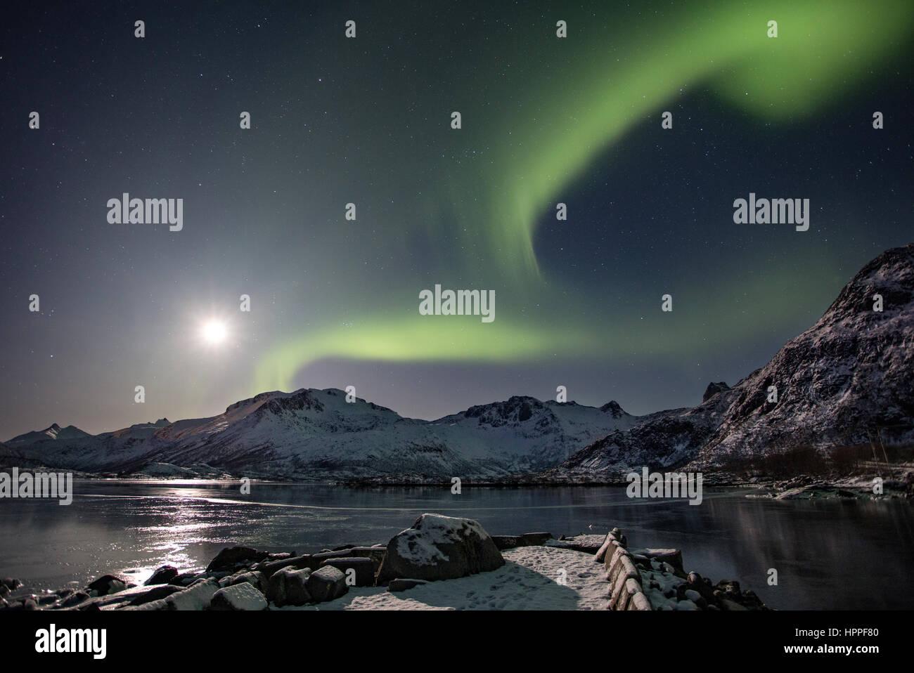 aurora borealis over Lofoten Islands, Norway, Europe - Stock Image