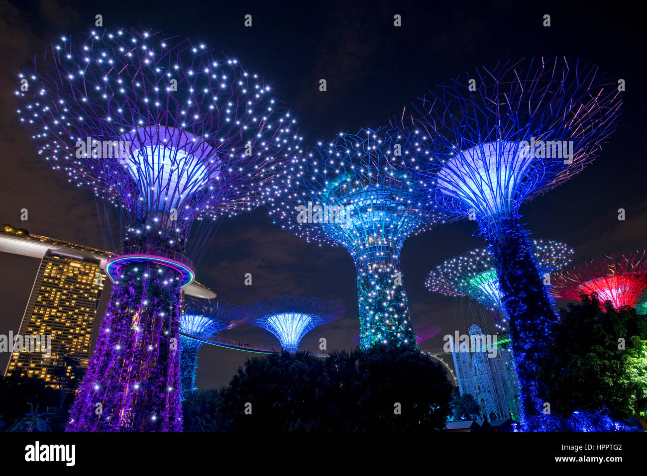 Supertrees In The Grounds Of The Gardens By The Bay During Ocbc
