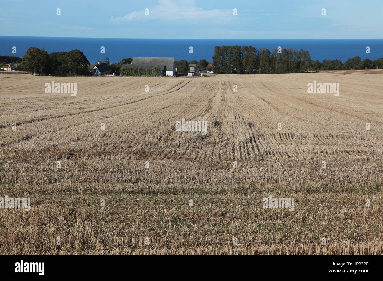 The Baltic Sea seen from agricultural land behind Svaneke, a small town on the island of Bornholm, Denmark Stock Photo
