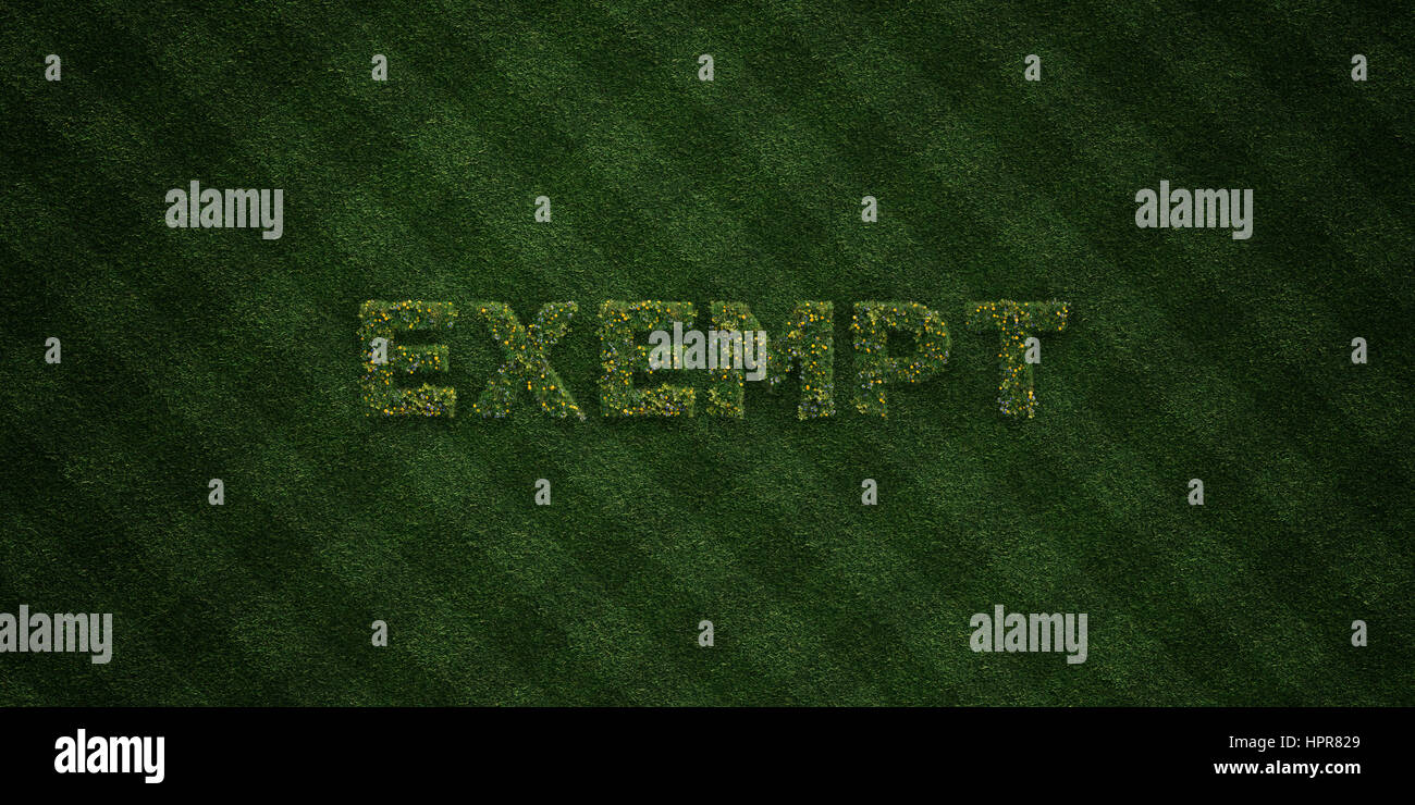 EXEMPT - fresh Grass letters with flowers and dandelions - 3D rendered royalty free stock image. Can be used for - Stock Image