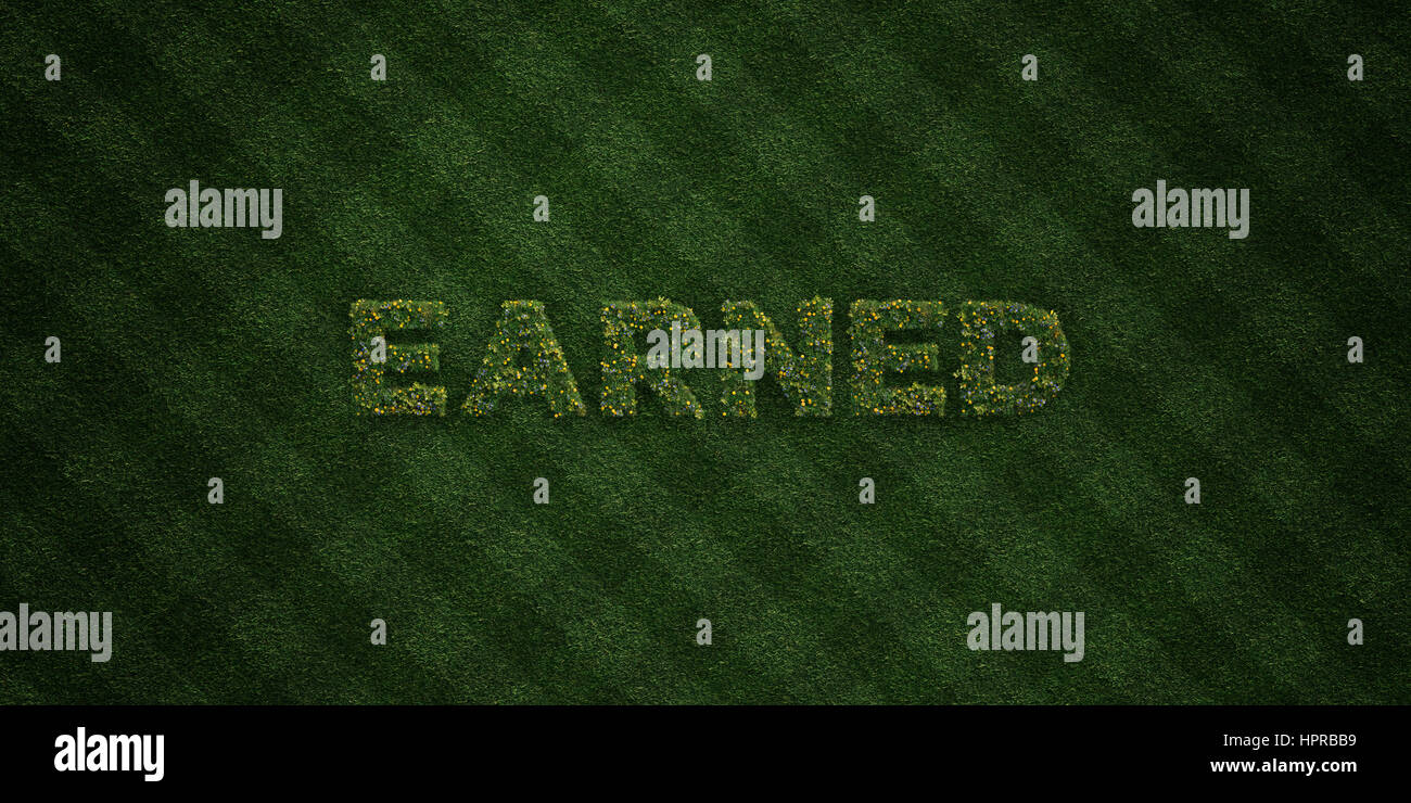 EARNED - fresh Grass letters with flowers and dandelions - 3D rendered royalty free stock image. Can be used for - Stock Image