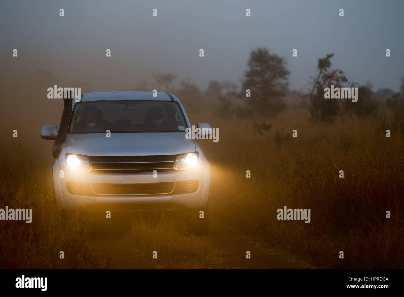 A truck explores Kruger National Park, South Africa on an early morning game drive in search of safari animals. - Stock Image