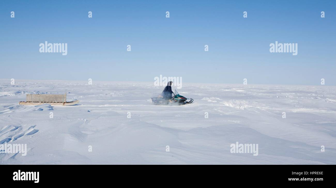 Inuits in Canada are hunting animals for fur - Stock Image