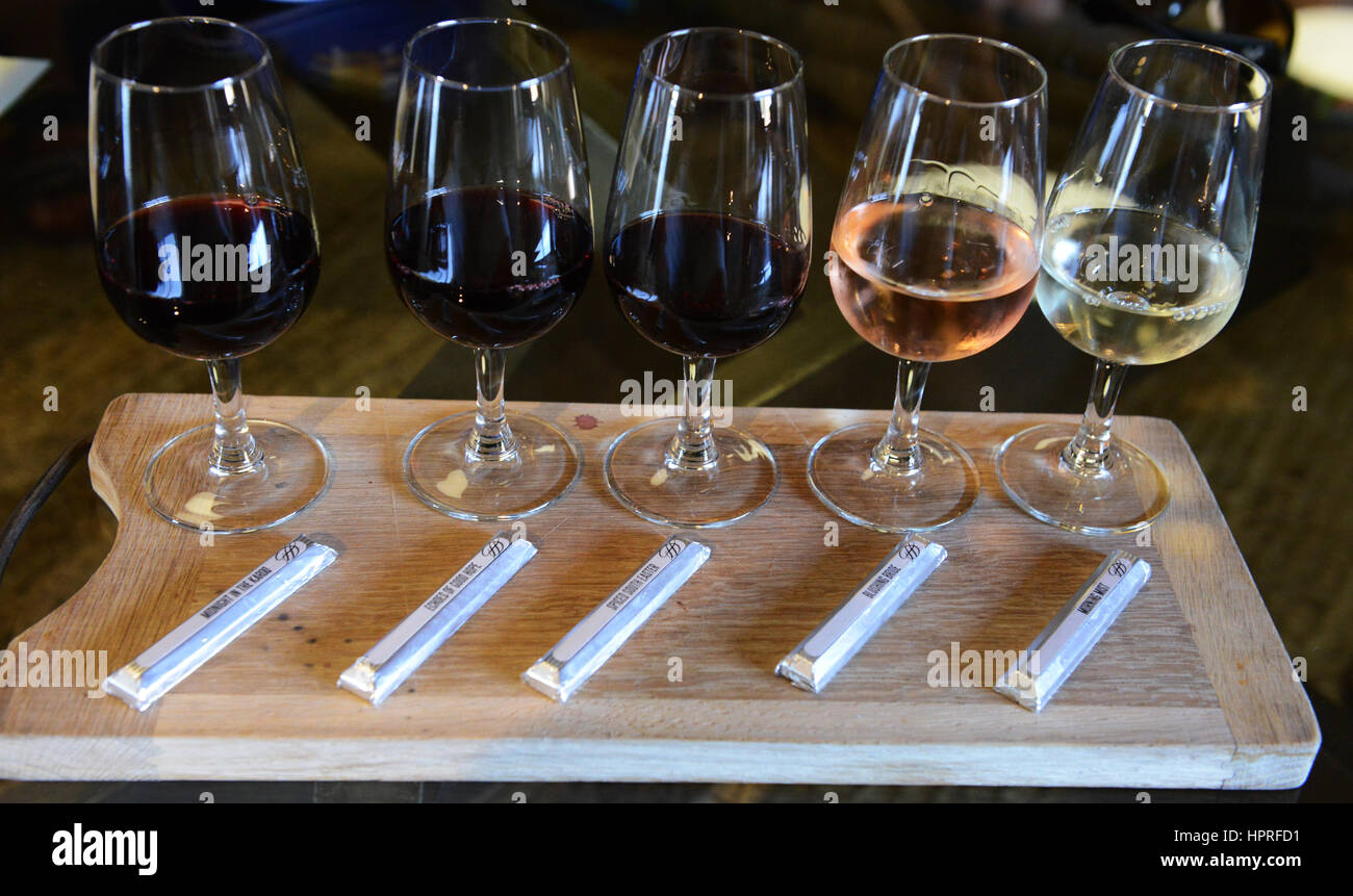 Wine pairing and tasting in the Durbanville hills winery near Cape Town, South Africa. - Stock Image