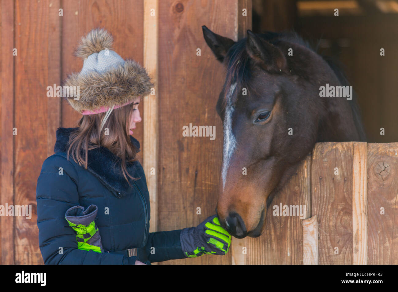 Girls and horses - Stock Image