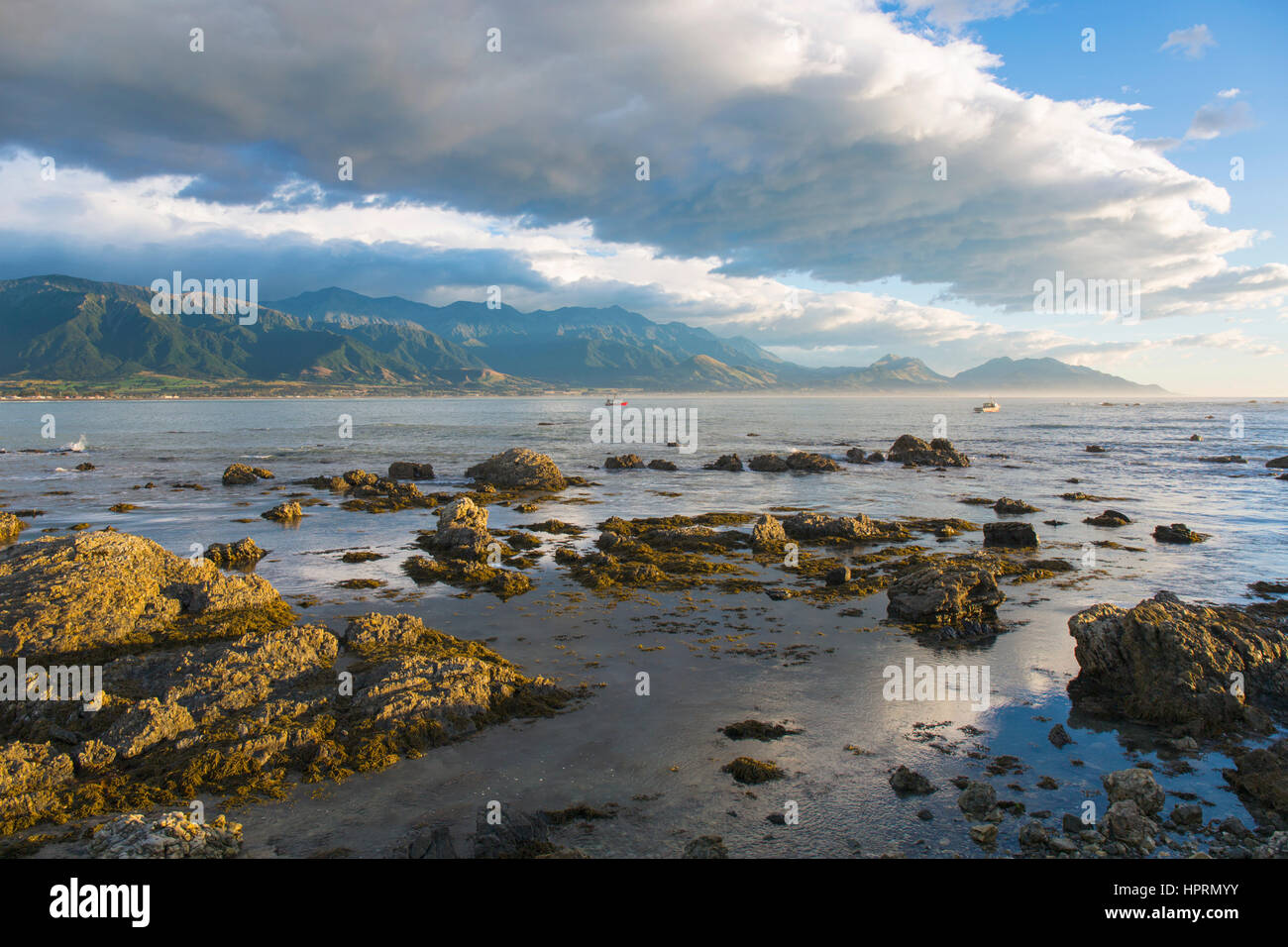 Kaikoura Canterbury New Zealand View From Rocky Shore