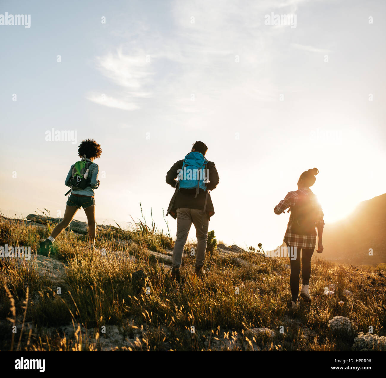 Rear view shot of young people hiking in nature on a summer day. Three young friends on a country walk. - Stock Image