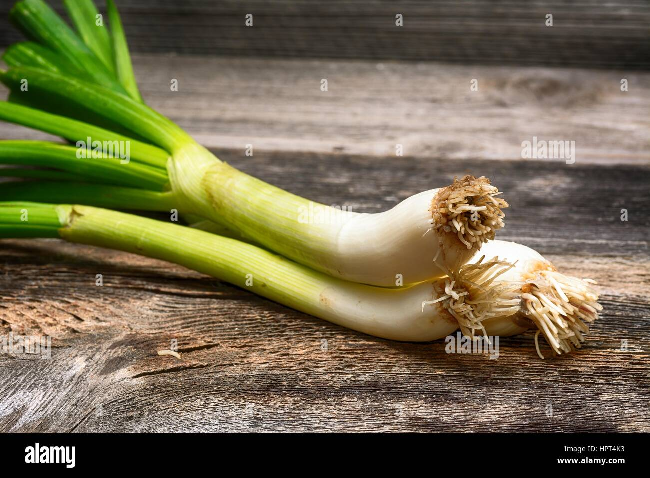 spring onions bunch - Stock Image