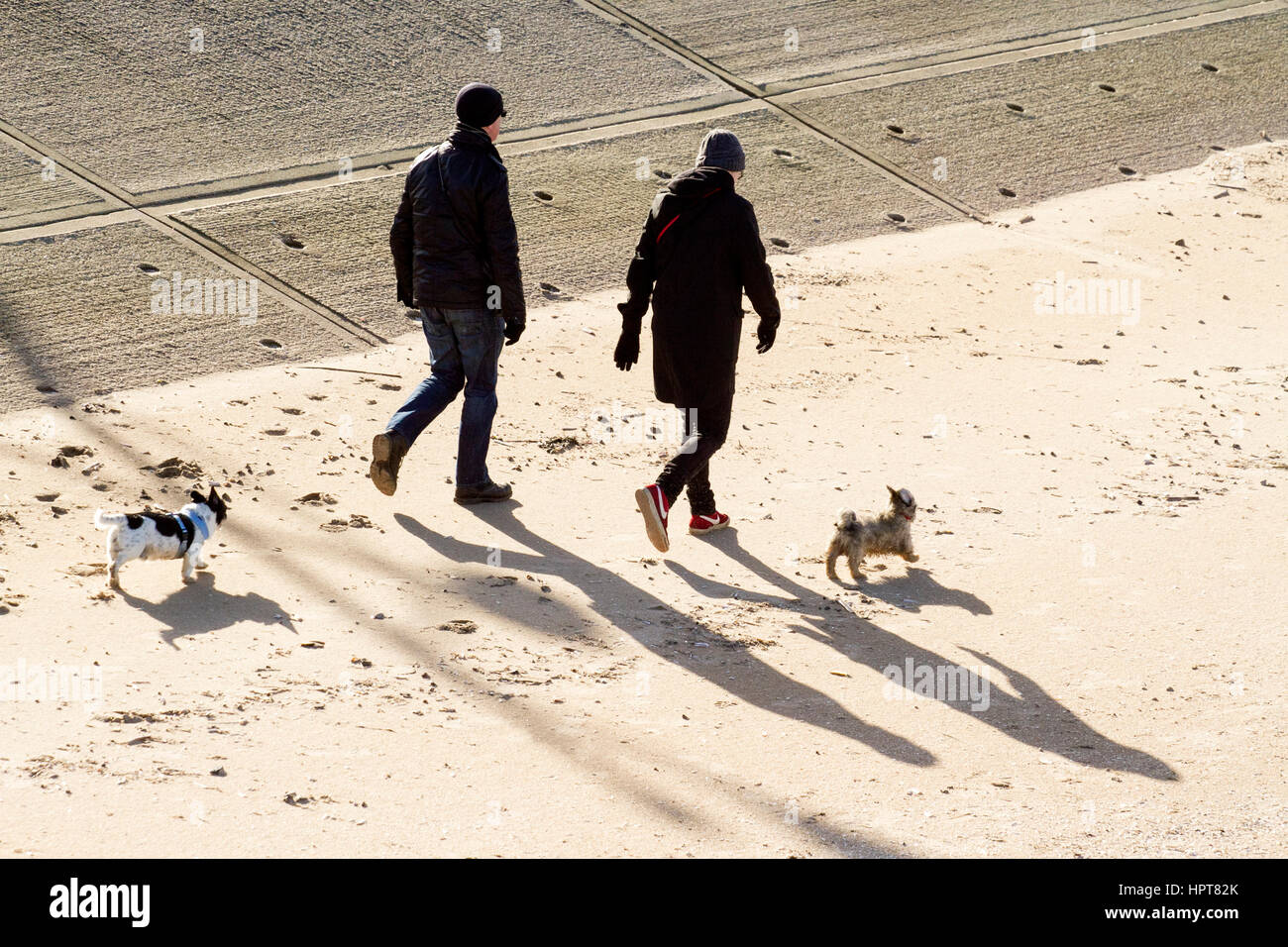walking the dor. 24th Feb, 2017. UK Weather. Glorious spring sunshine glazes over Southport in Merseyside.  After - Stock Image