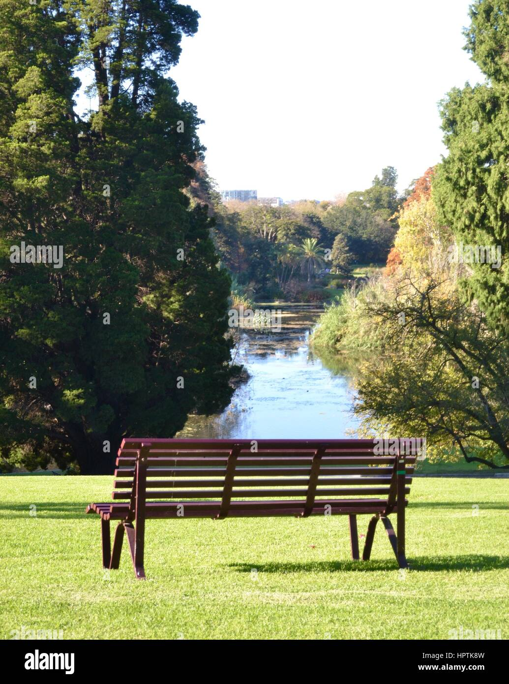 Empty park bench on a grassy hill in the park - Stock Image