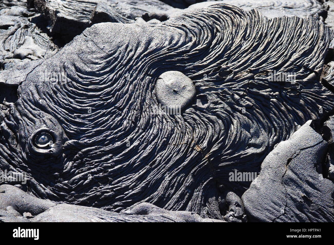 Pahoehoe ('ropy') lava in the Galapagos Islands - Stock Image
