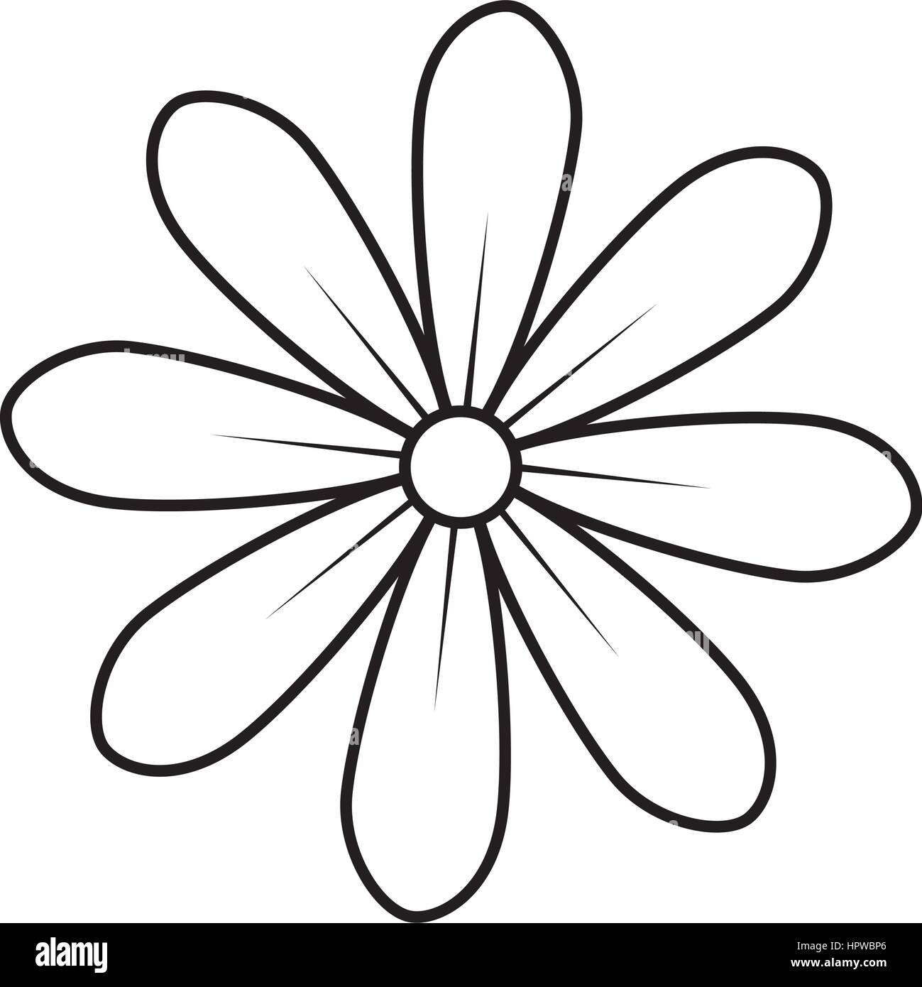 Monochrome Contour Of Daisy Flower Icon Floral Design Stock Vector