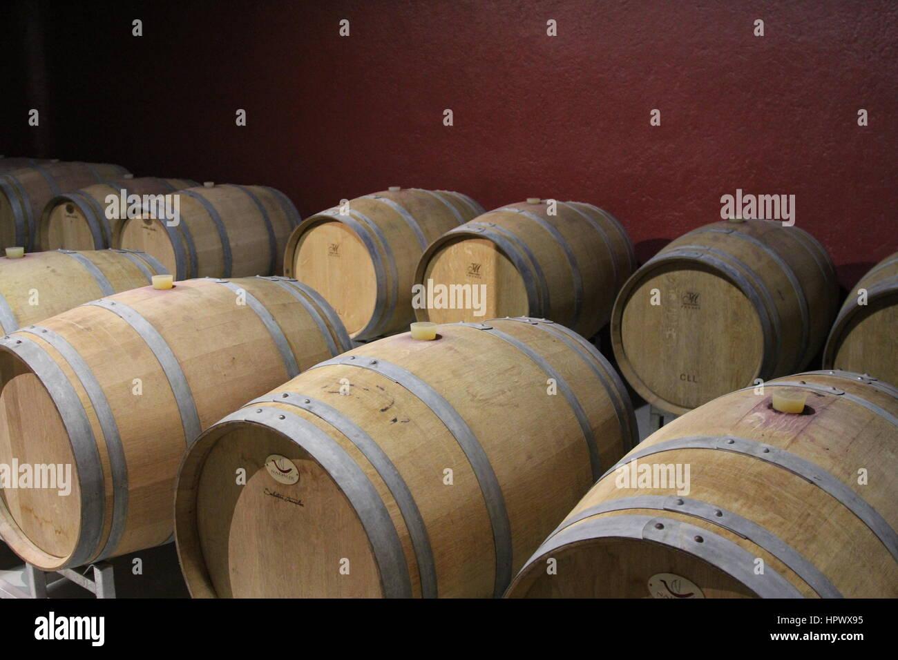 Mendoza Vineyard Cellar, Argentina - Stock Image