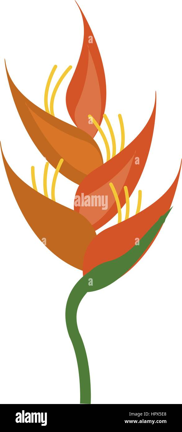 heliconia tropical natural icon Stock Vector