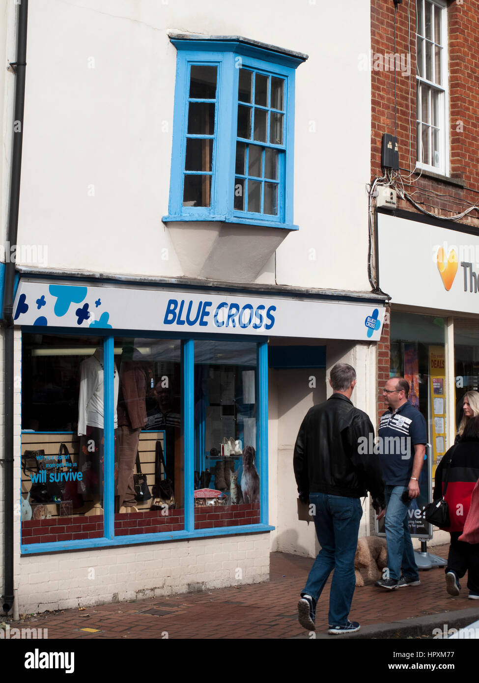 Blue Cross is a registered animal welfare charity in the United Kingdom, founded in 1897 as Our Dumb Friends League - Stock Image
