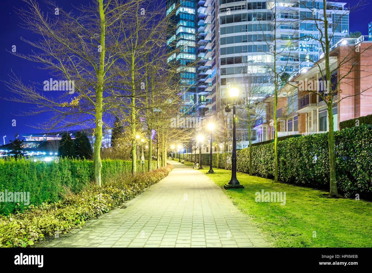 Walk Path Night - Stock Image