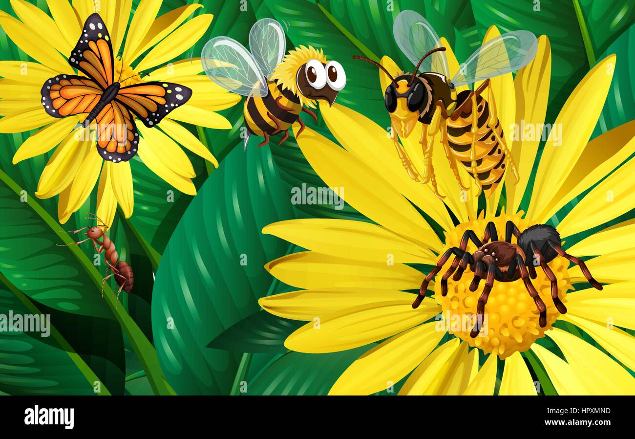 Different types of bugs flying around yellow flowers illustration different types of bugs flying around yellow flowers illustration mightylinksfo