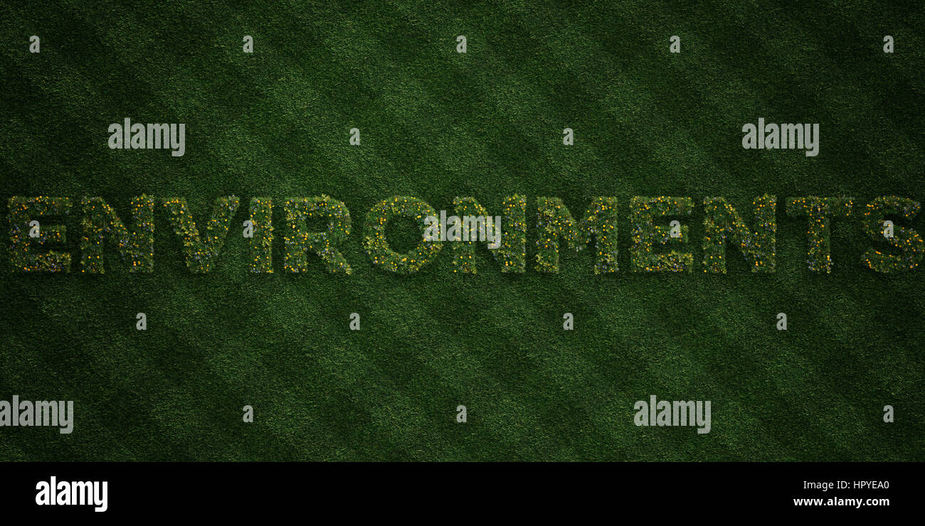 ENVIRONMENTS - fresh Grass letters with flowers and dandelions - 3D rendered royalty free stock image. Can be used - Stock Image