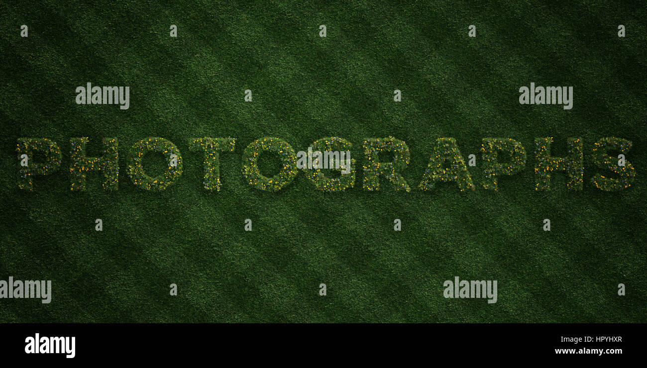 PHOTOGRAPHS - fresh Grass letters with flowers and dandelions - 3D rendered royalty free stock image. Can be used Stock Photo