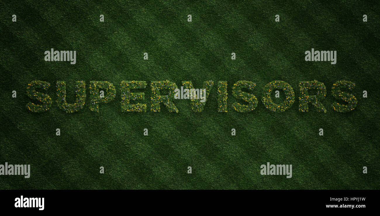 SUPERVISORS - fresh Grass letters with flowers and dandelions - 3D rendered royalty free stock image. Can be used - Stock Image