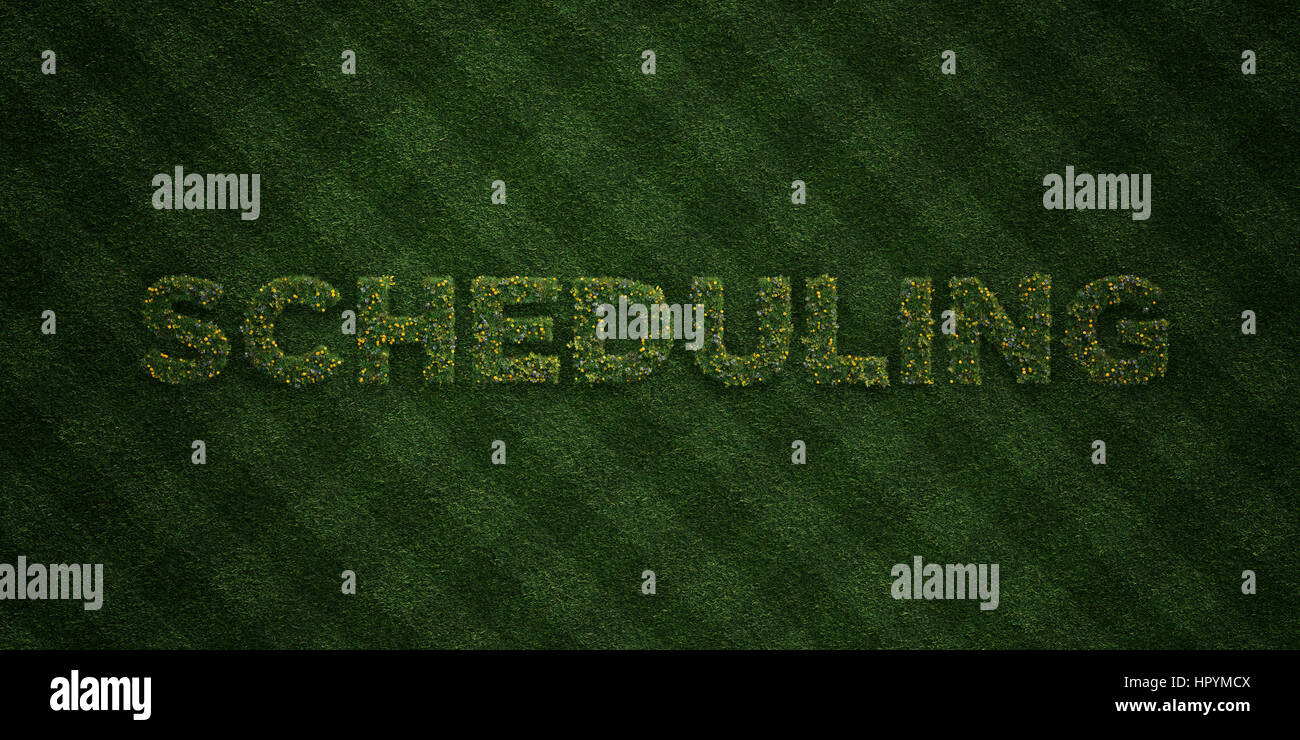 SCHEDULING - fresh Grass letters with flowers and dandelions - 3D rendered royalty free stock image. Can be used - Stock Image