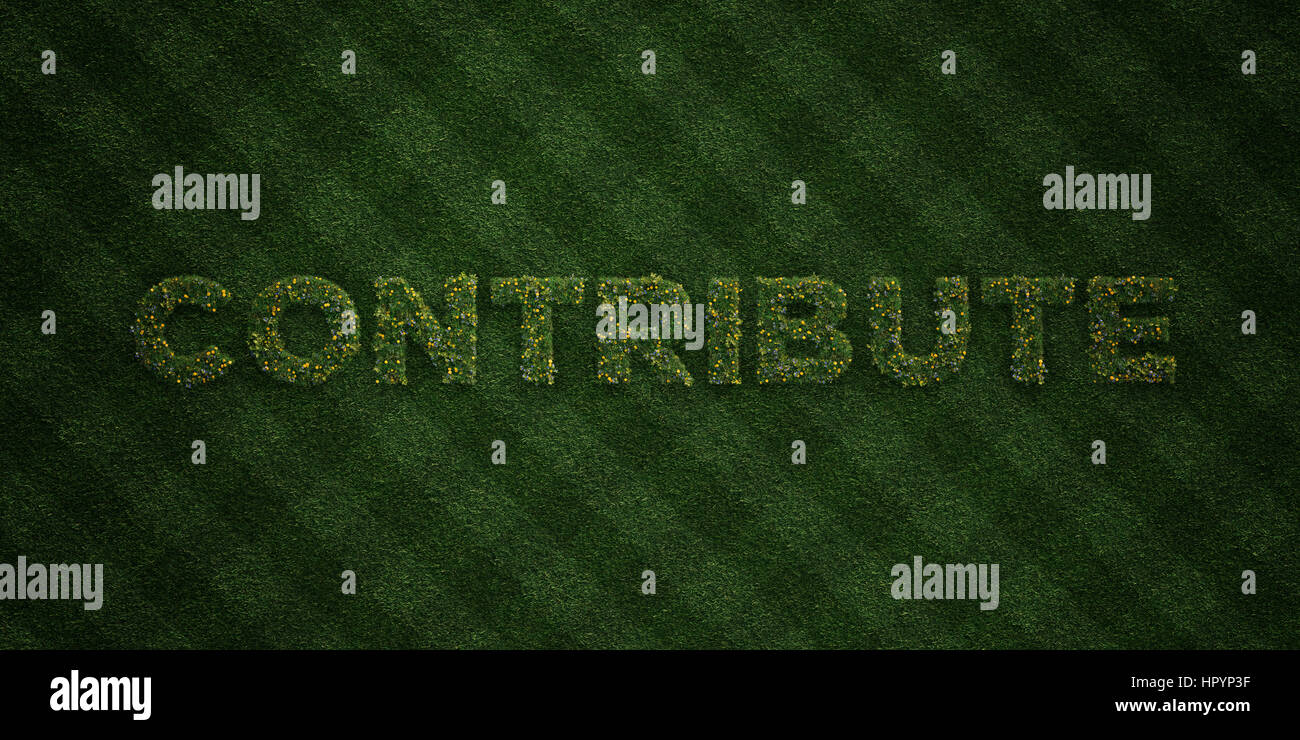 CONTRIBUTE - fresh Grass letters with flowers and dandelions - 3D rendered royalty free stock image. Can be used - Stock Image
