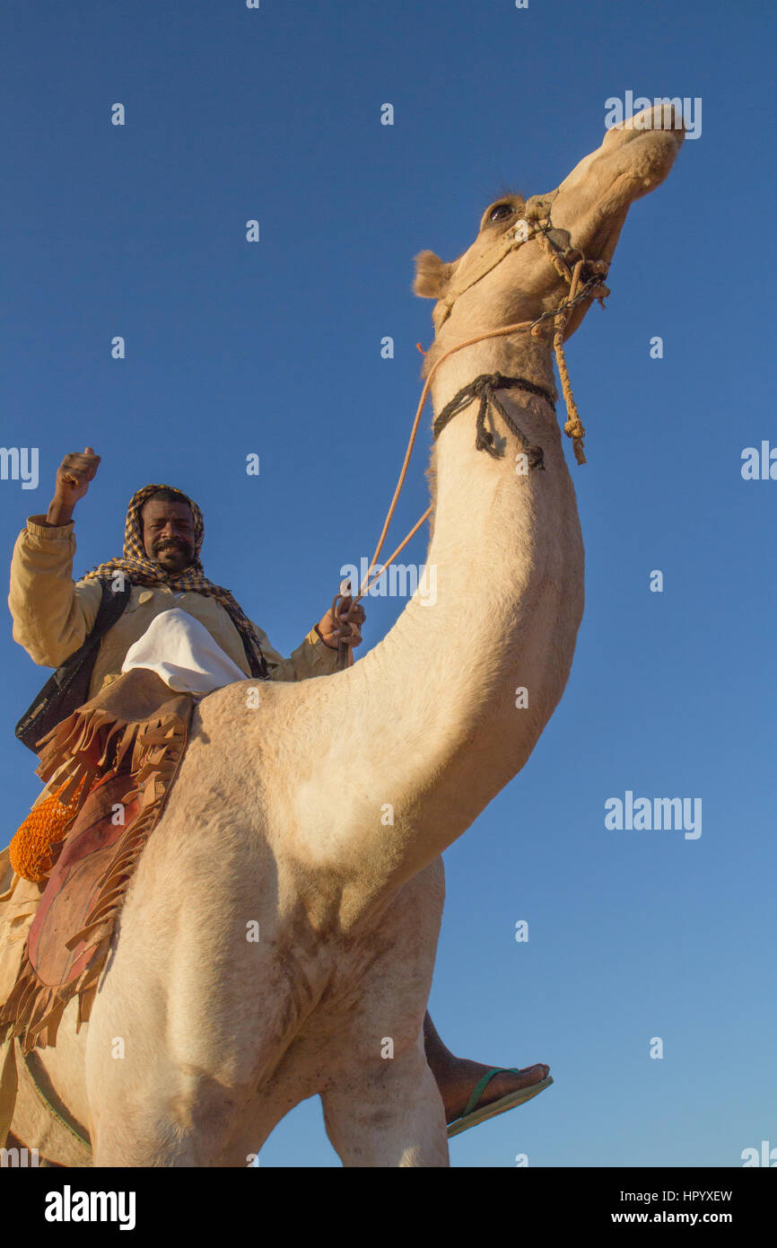 Khartoum, Sudan - Dec 19, 2015: Cameleer posing with his camel at sunrise ahead of the pyramids. - Stock Image
