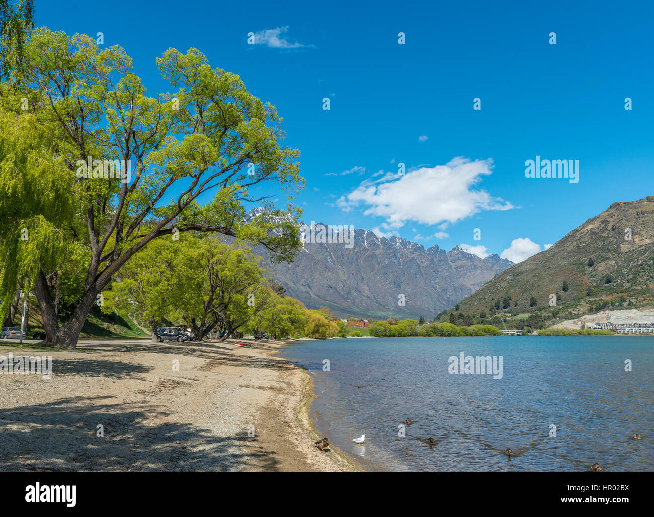 Beach, Lake Wakatipu, The Remarkables mountain range at back, Queenstown, Otago Region, Southland, New Zealand - Stock Image