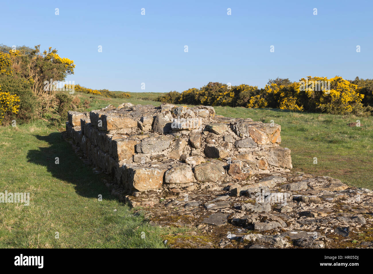Hadrian's Wall: a stretch of Roman Wall near Black Carts, between Limestone Corner and Chesters Roman fort - Stock Image