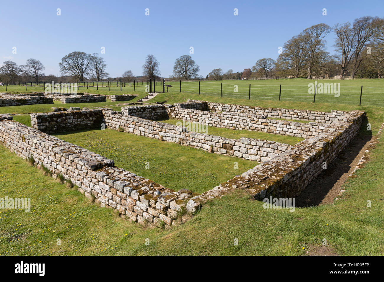 Hadrian's Wall: Chesters Roman fort (Cilurnum or Cilurvum) - the remains of the barrack blocks - Stock Image