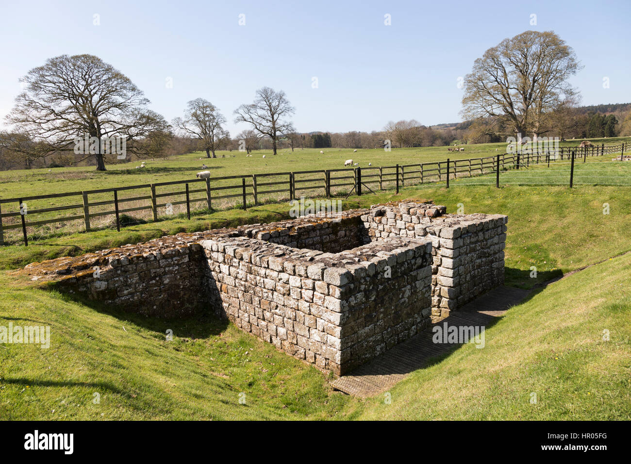 Hadrian's Wall: Chesters Roman fort (Cilurnum or Cilurvum) - the remains of the south-east interval tower - Stock Image