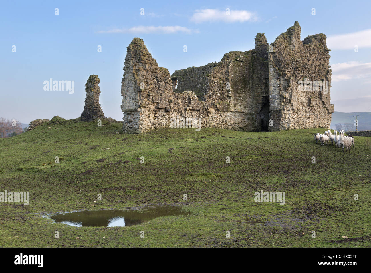 Bewcastle Castle, Cumbria, England - remains of the the west curtain wall and gatehouse, viewed from across the - Stock Image