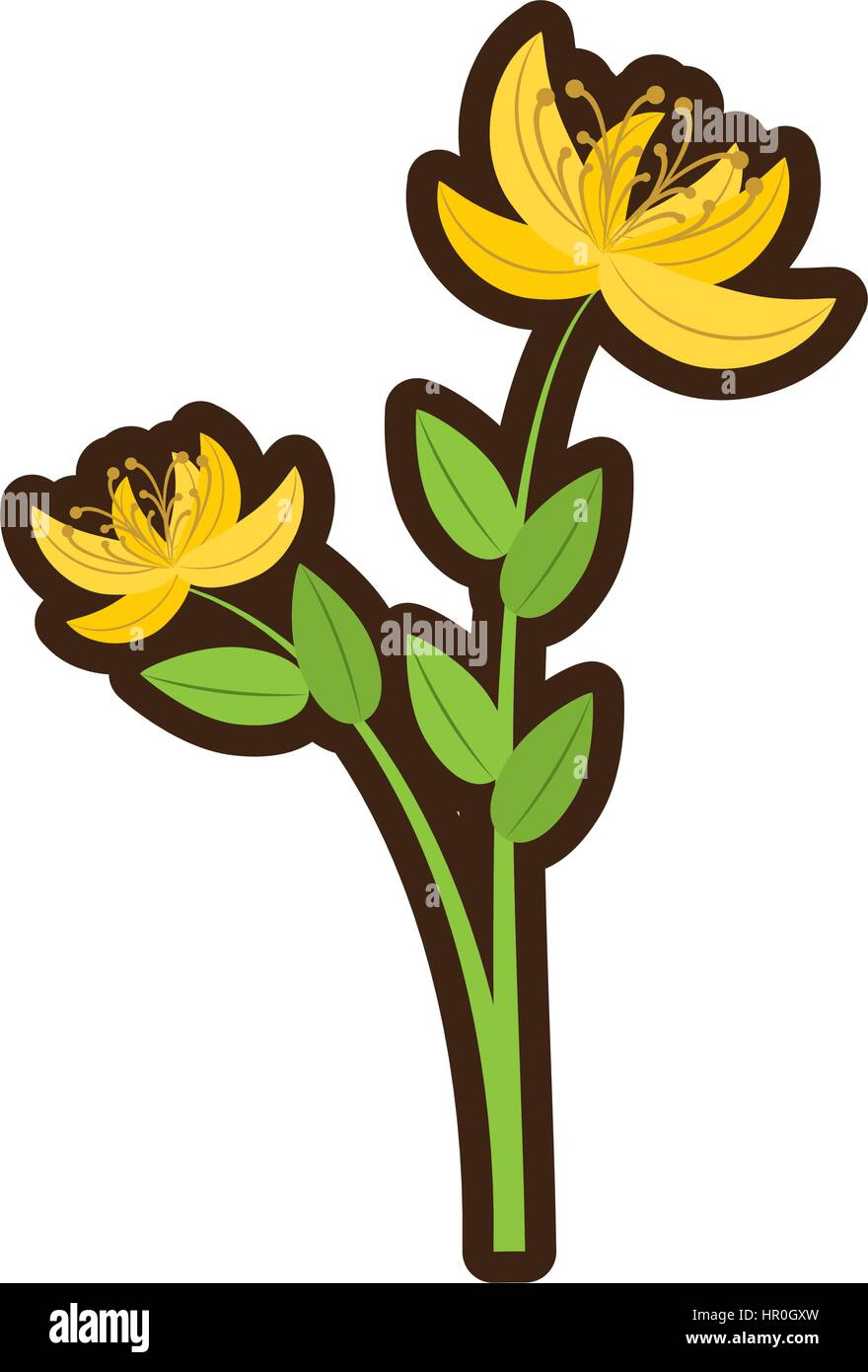 Cartoon yellow lily flower natural stock vector art illustration cartoon yellow lily flower natural izmirmasajfo
