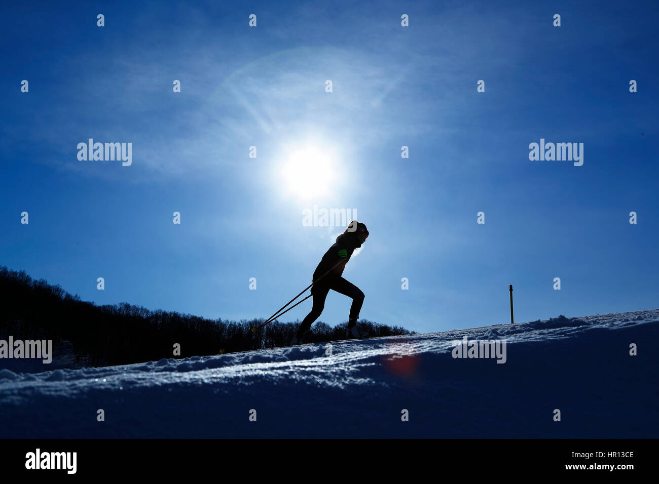 Hokkaido, Japan. 25th Feb, 2017. The ambience shot Biathlon : Mixed Relay during the 2017 Sapporo Asian Winter Games - Stock Image