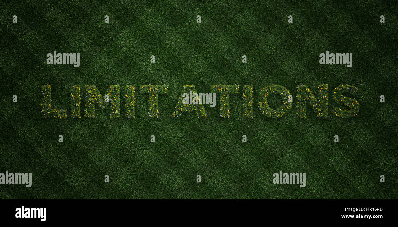 LIMITATIONS - fresh Grass letters with flowers and dandelions - 3D rendered royalty free stock image. Can be used - Stock Image