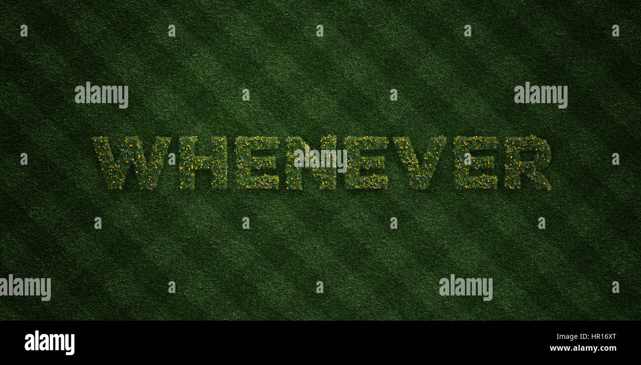 WHENEVER - fresh Grass letters with flowers and dandelions - 3D rendered royalty free stock image. Can be used for - Stock Image