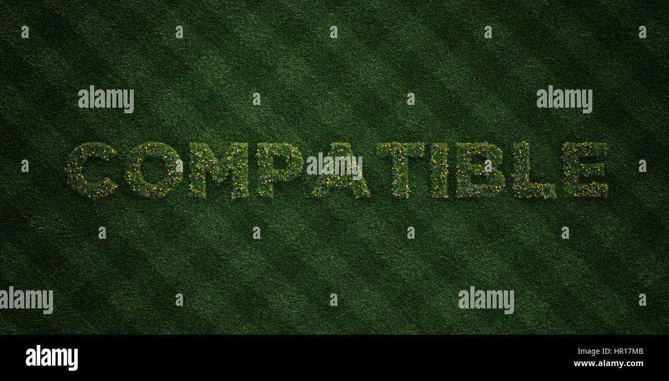 COMPATIBLE - fresh Grass letters with flowers and dandelions - 3D rendered royalty free stock image. Can be used - Stock Image