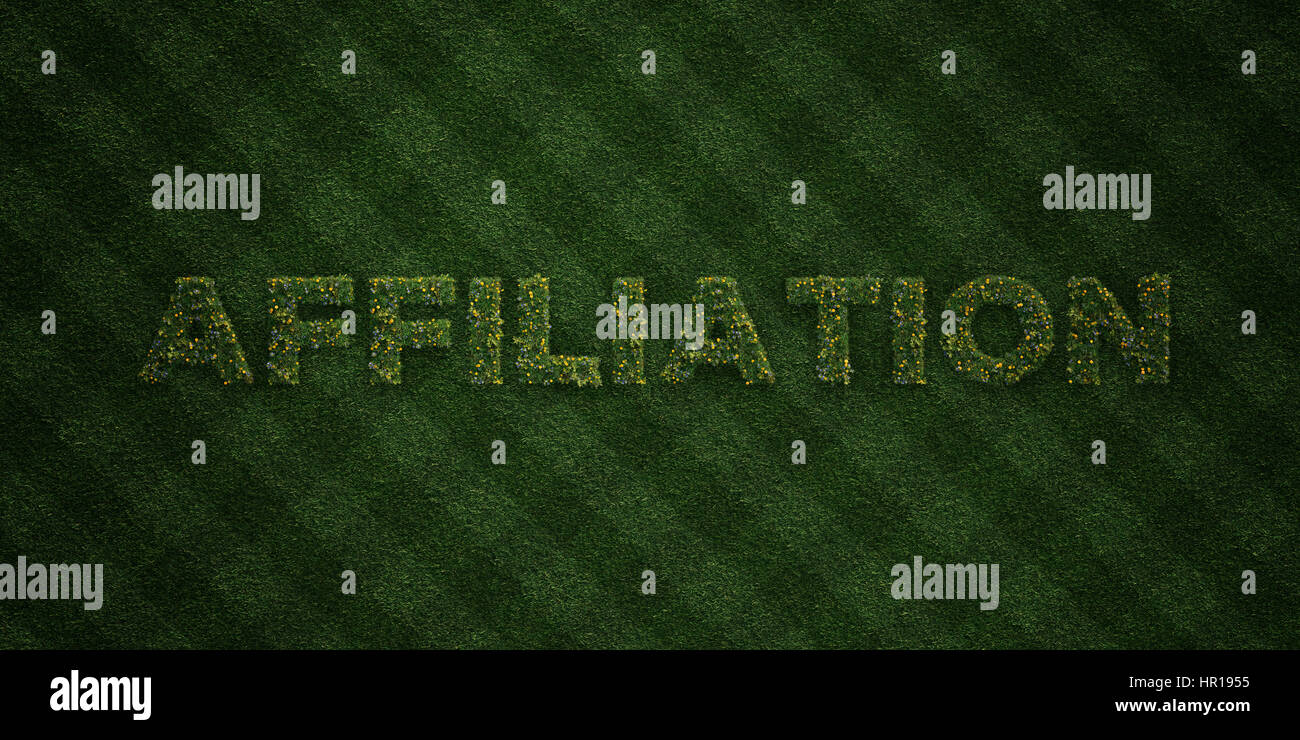 AFFILIATION - fresh Grass letters with flowers and dandelions - 3D rendered royalty free stock image. Can be used - Stock Image