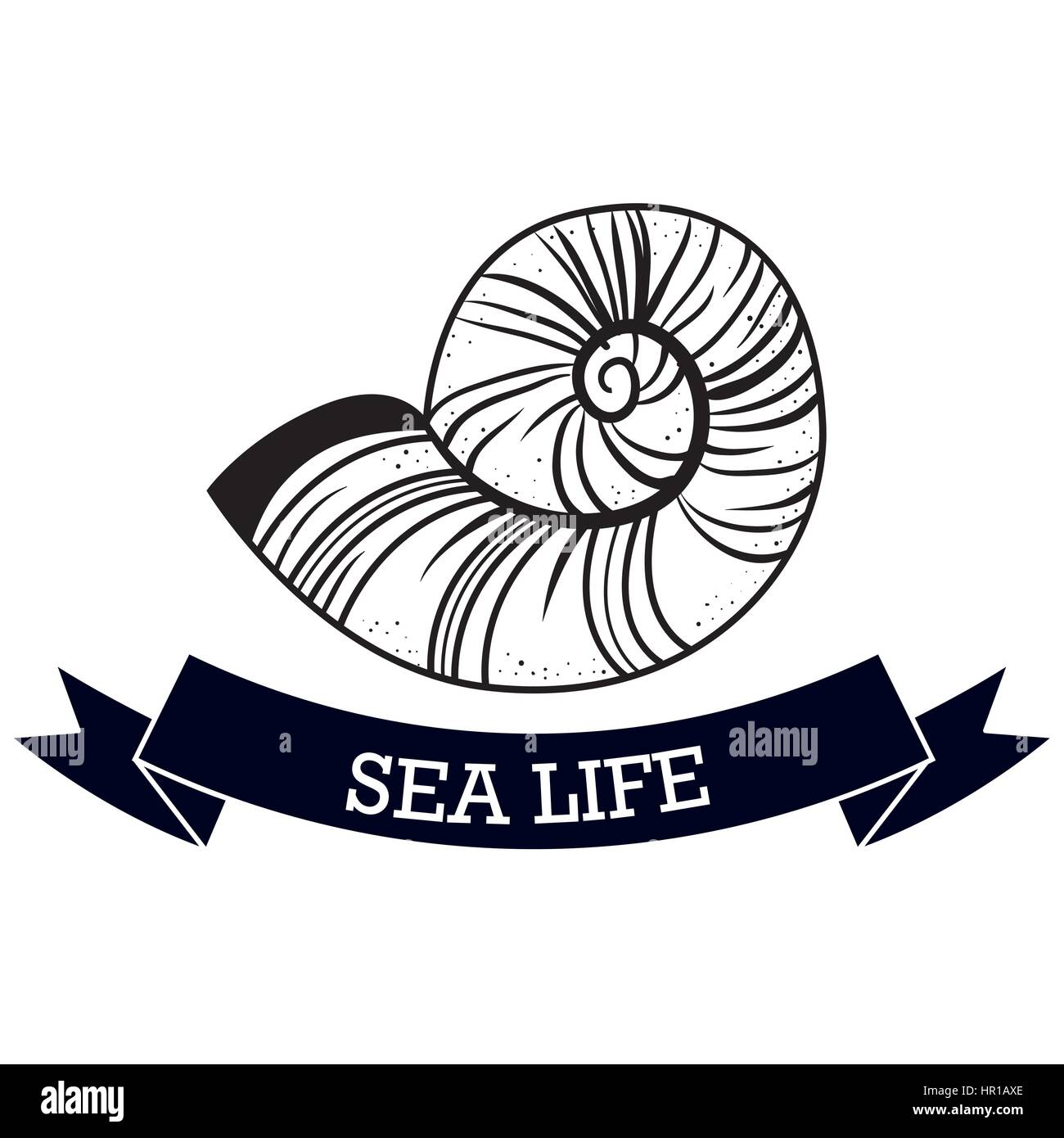 nautical frame with sea life - Stock Image