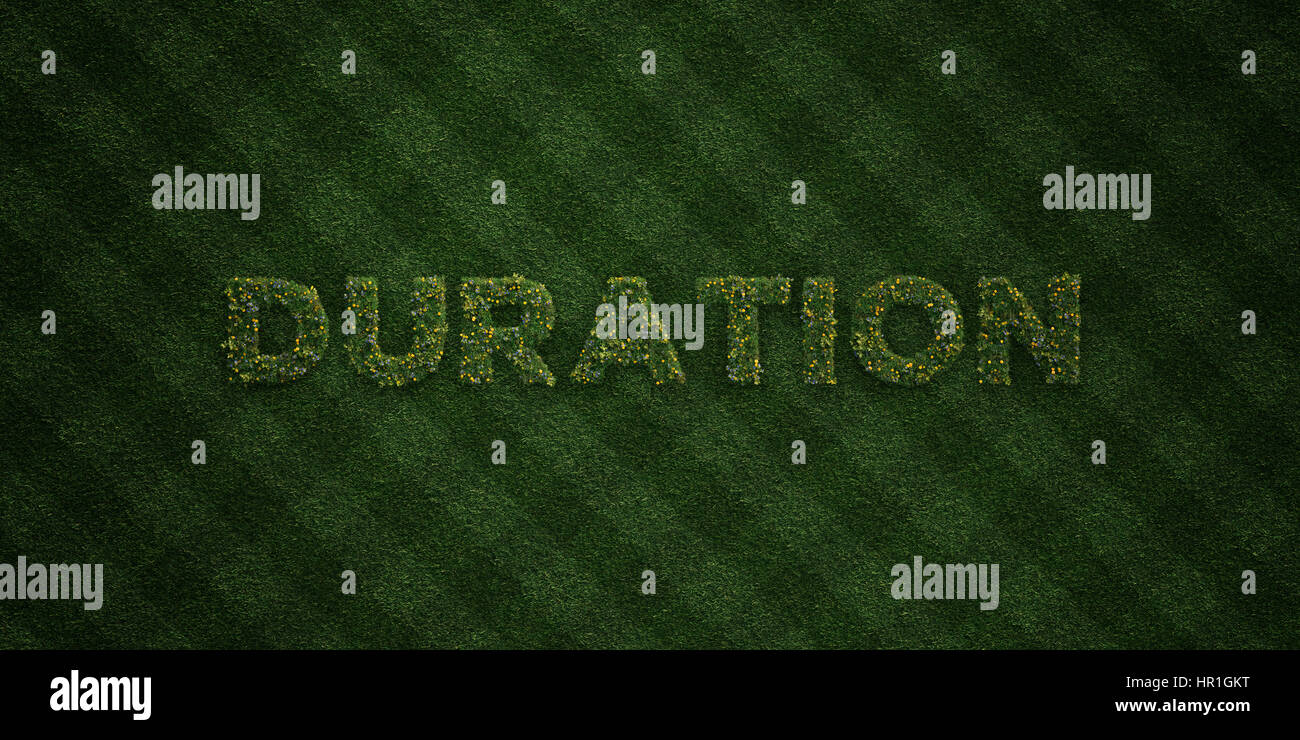 DURATION - fresh Grass letters with flowers and dandelions - 3D rendered royalty free stock image. Can be used for - Stock Image
