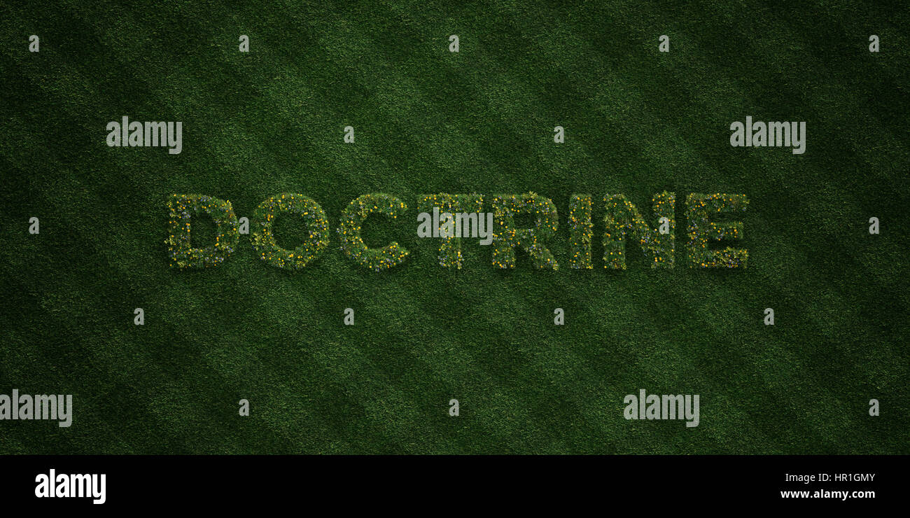 DOCTRINE - fresh Grass letters with flowers and dandelions - 3D rendered royalty free stock image. Can be used for - Stock Image