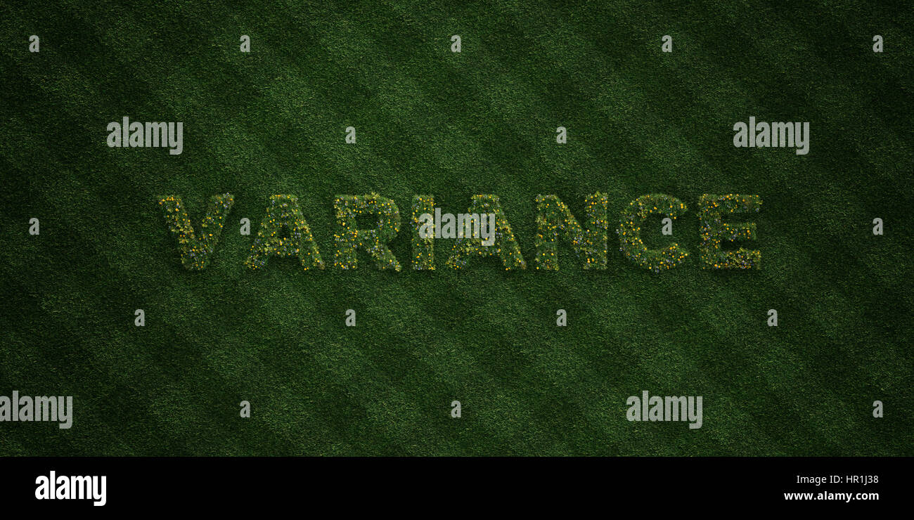 VARIANCE - fresh Grass letters with flowers and dandelions - 3D rendered royalty free stock image. Can be used for - Stock Image