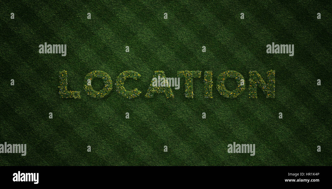 LOCATION - fresh Grass letters with flowers and dandelions - 3D rendered royalty free stock image. Can be used for - Stock Image
