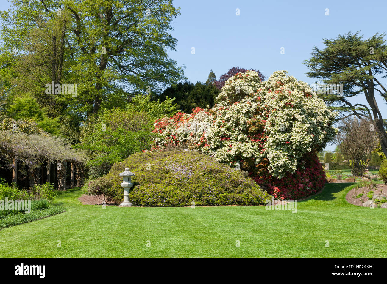 Red And White Flowering Trees And Shrubs In A Colorful English