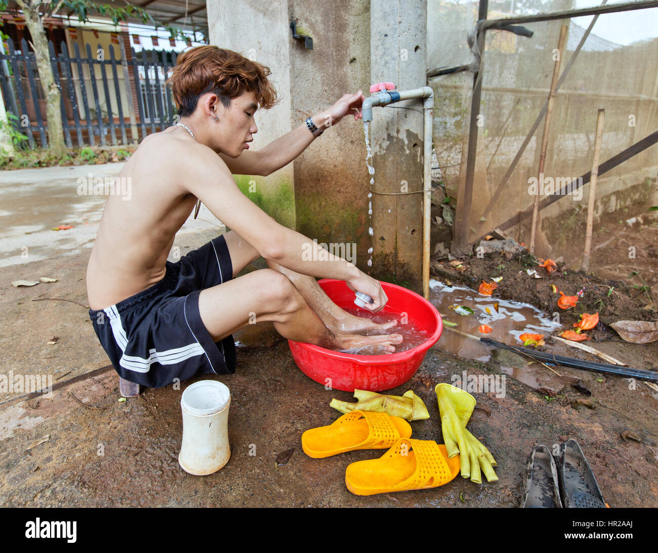 Young man cleaning up , washing his feet, after planting tomato seedlings in tunnel. - Stock Image