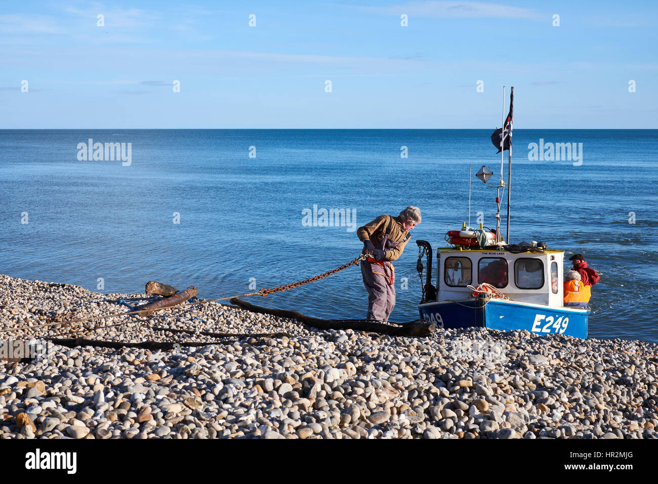 Hauling a fishing boat back on to the shore at Beer in Devon, U.K. - Stock Image