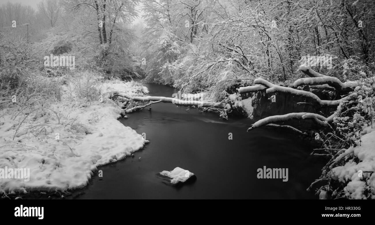 snow storm - Stock Image