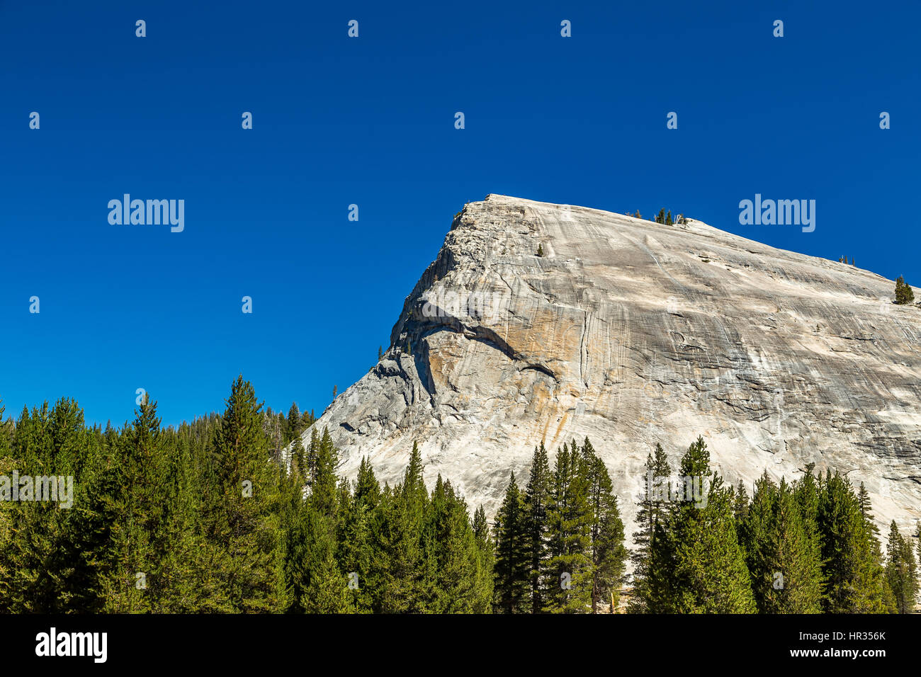 Lembert Dome is a granite dome rock formation in Yosemite National Park in the US state of California. The dome Stock Photo