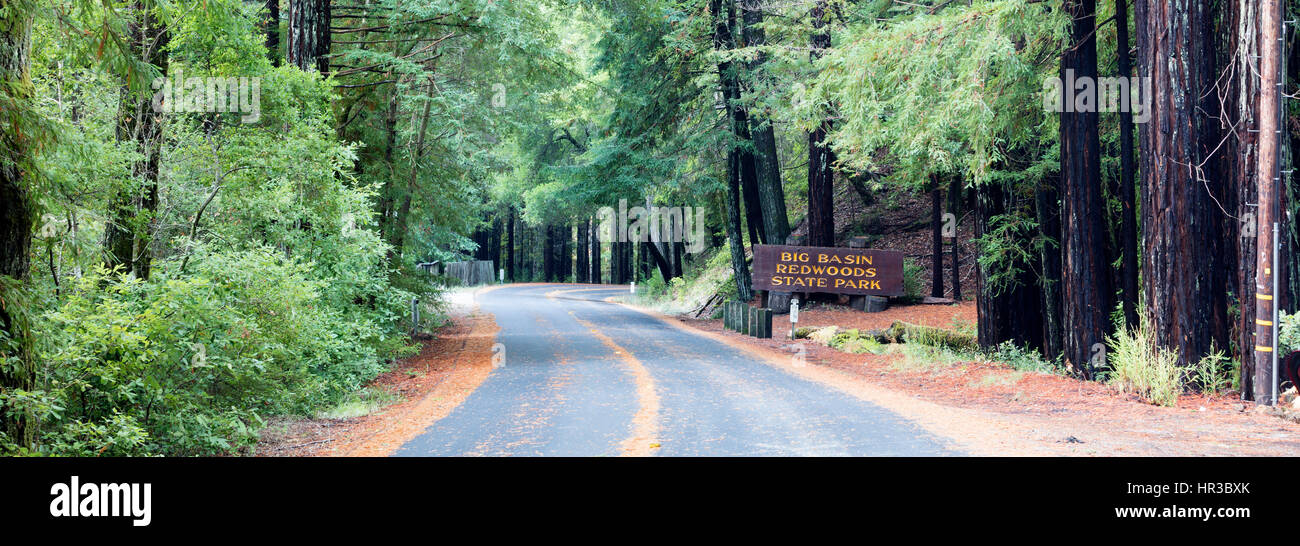 Road with road sign, Big Basin Redwoods State Park, California, USA Stock Photo
