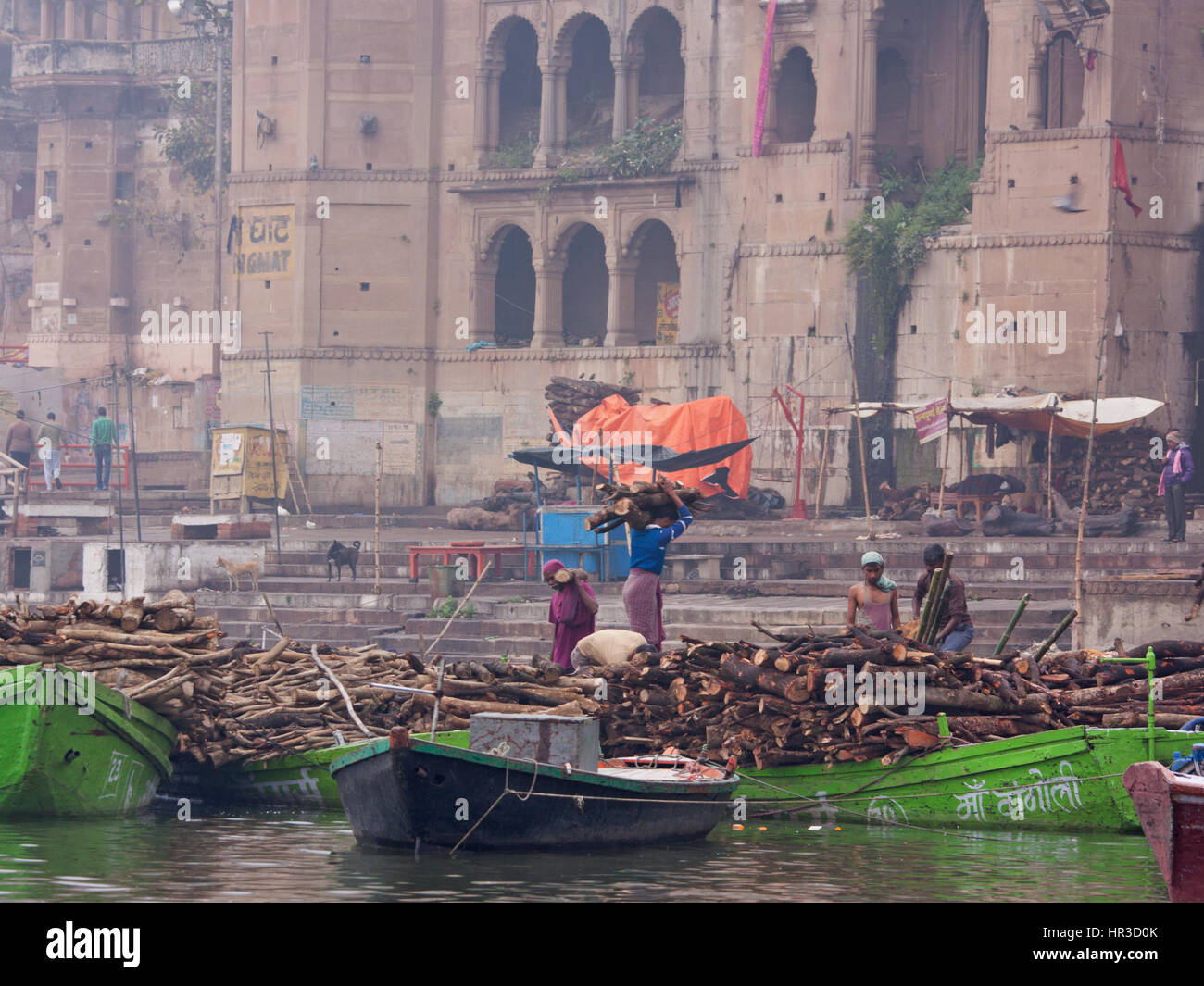 Workers transport wood for building funeral pyres at Manikarnika ghat, Varanasi, on the Ganges in the early morning. - Stock Image